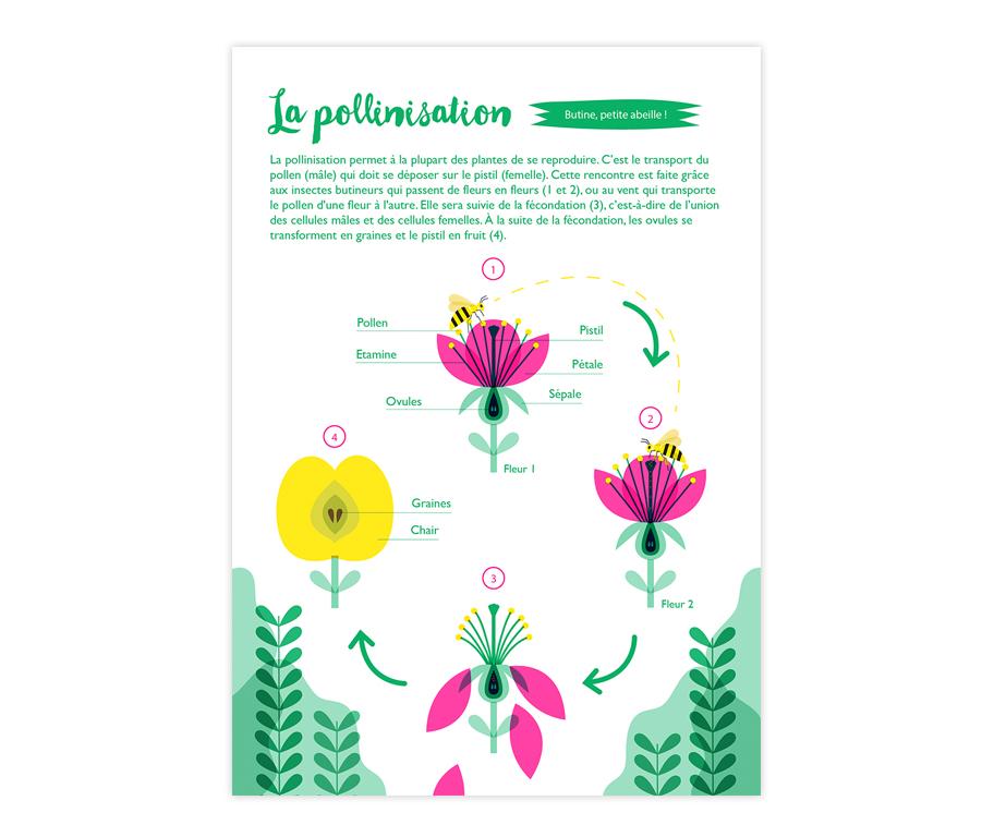 Page sur la pollinisation imprimée en risographie.