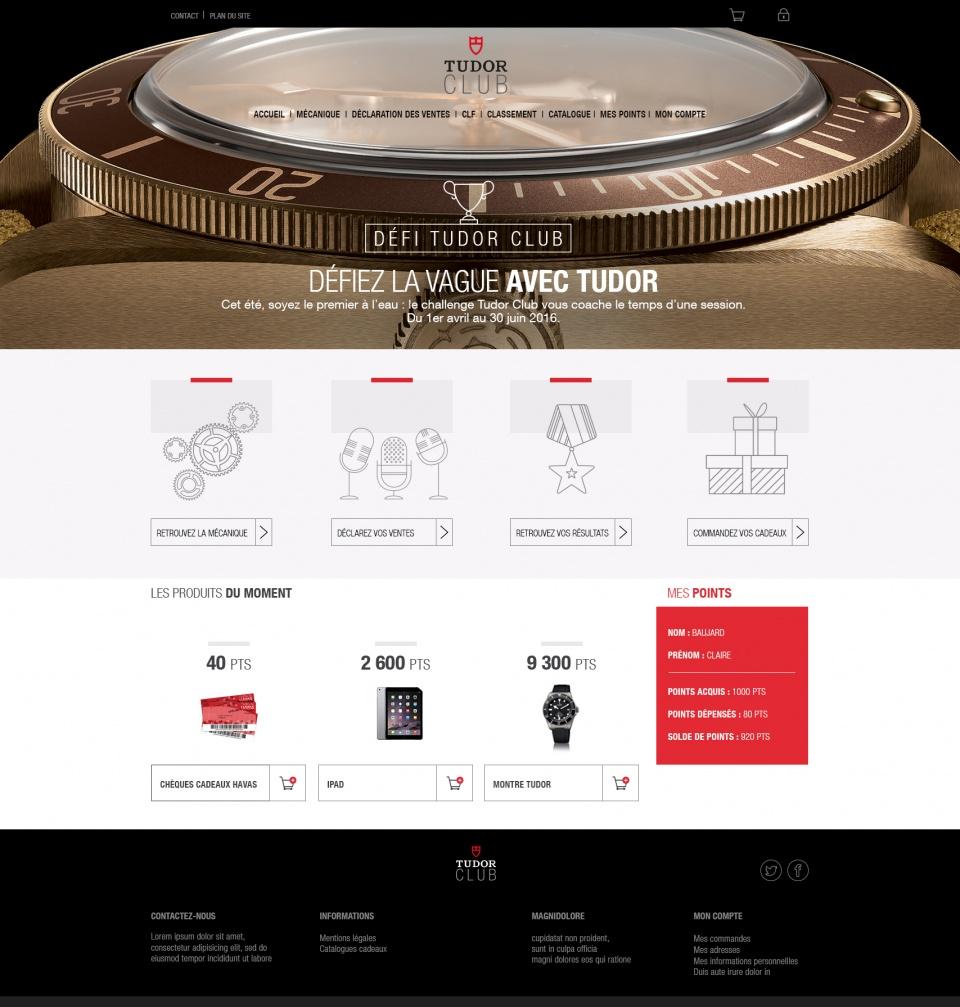 Tudor website 1