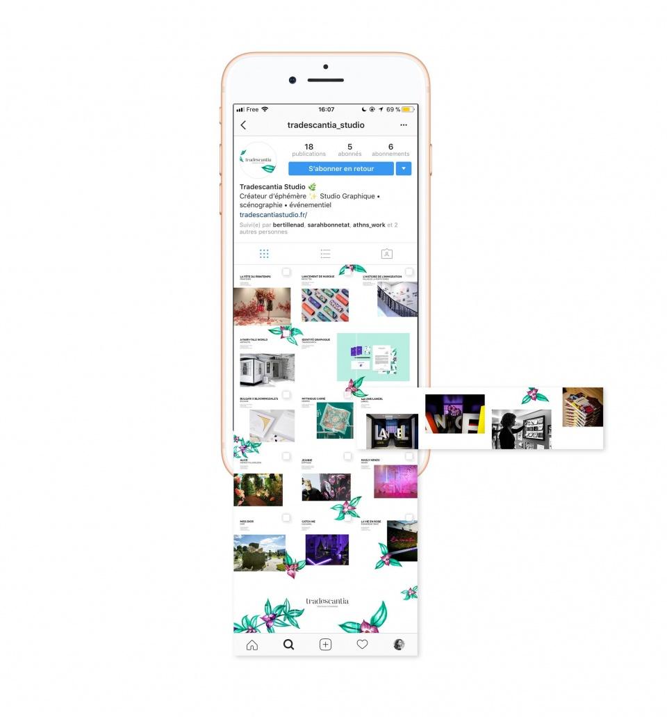 Instagram Tradescantia