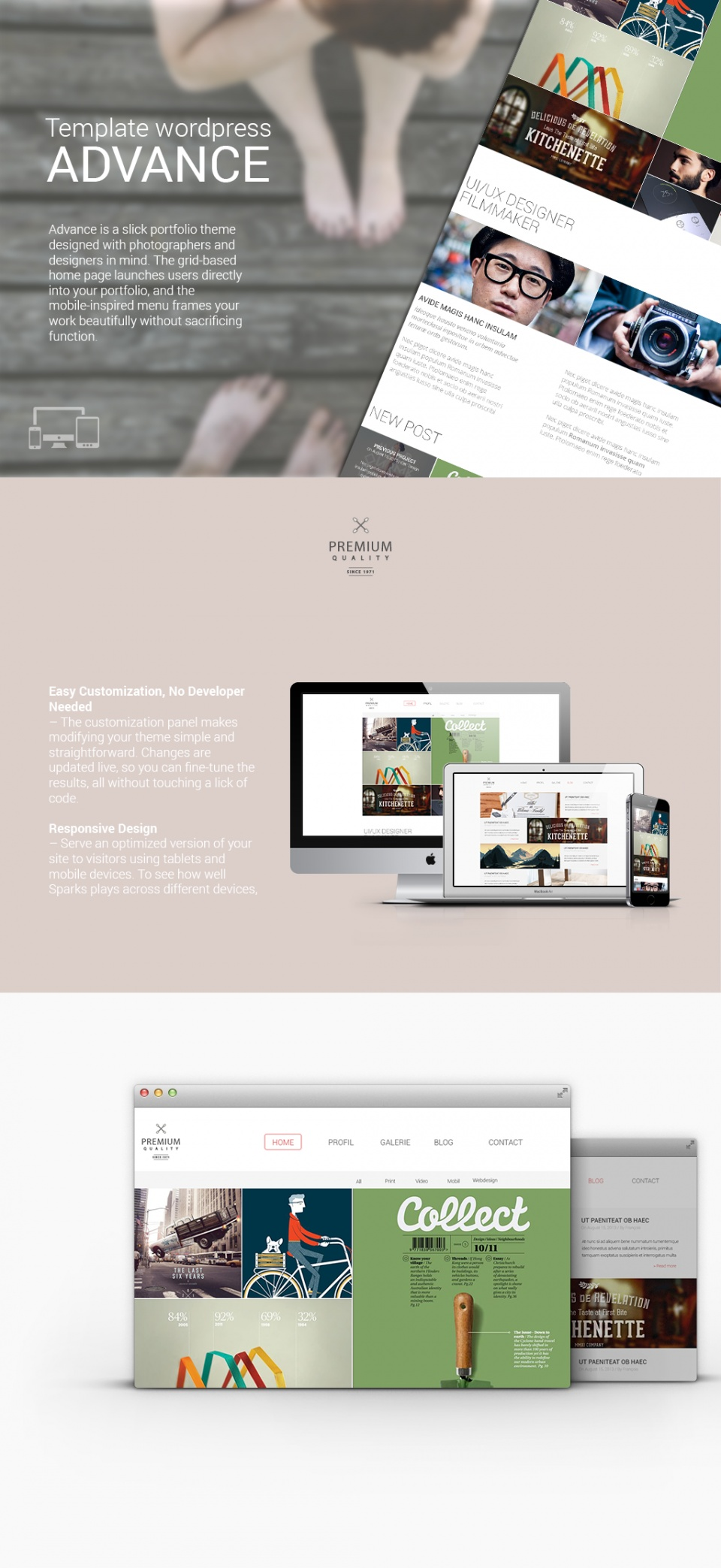 Theme wordpress advance