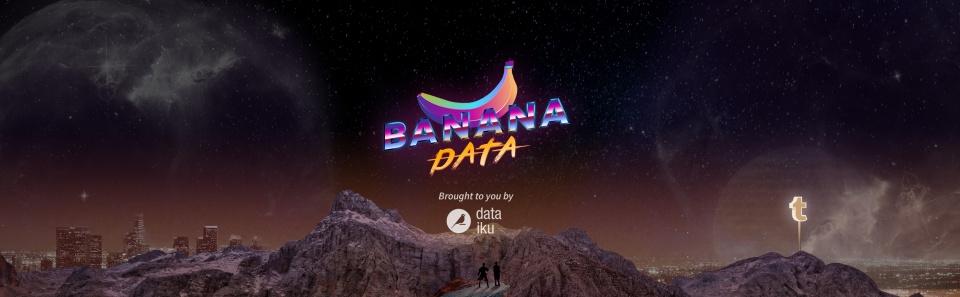 Banana Data - Logo et déclinaison de l'univers