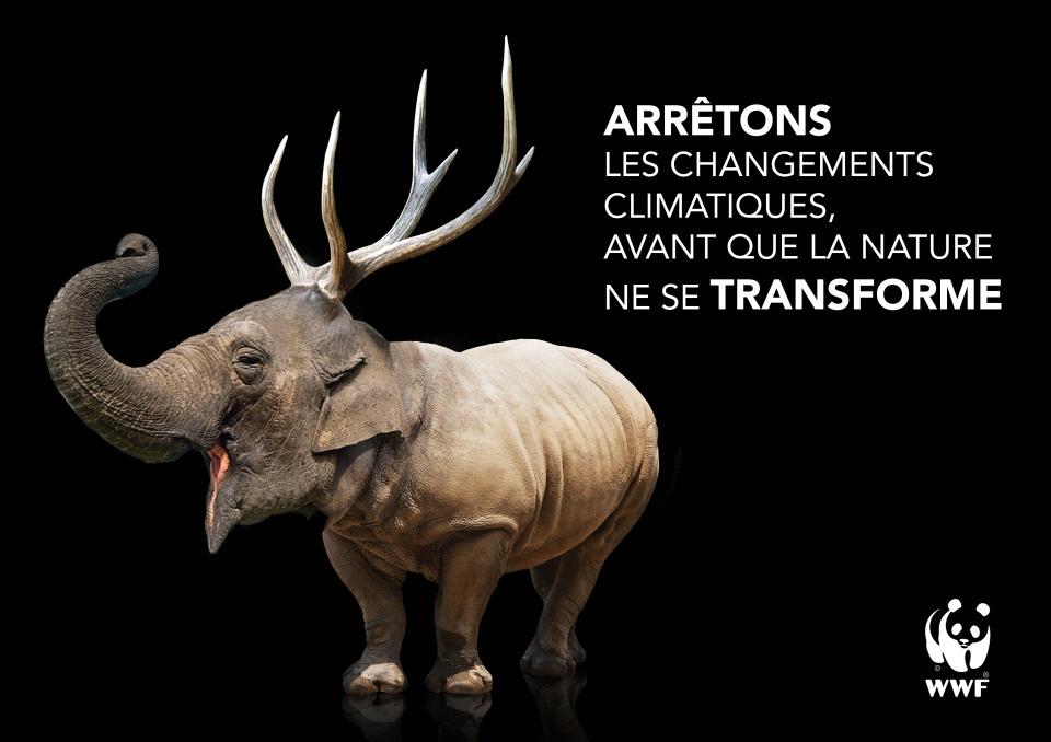 Campagne de pub WWF