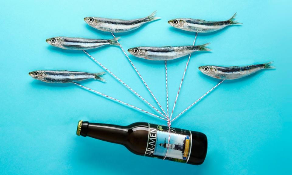 sardines volantes