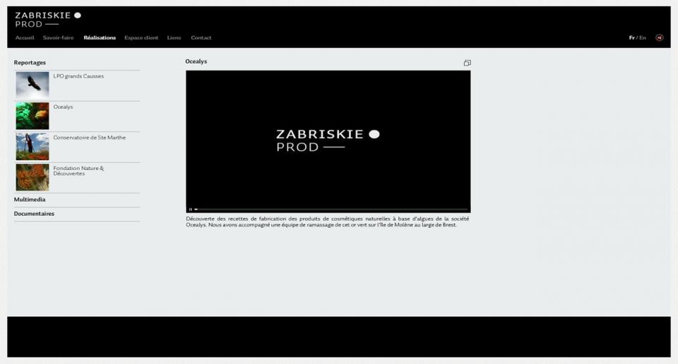 ZabriskieProd.com