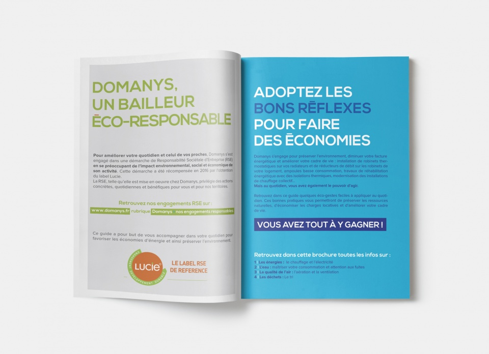 double page type brochure Domanys