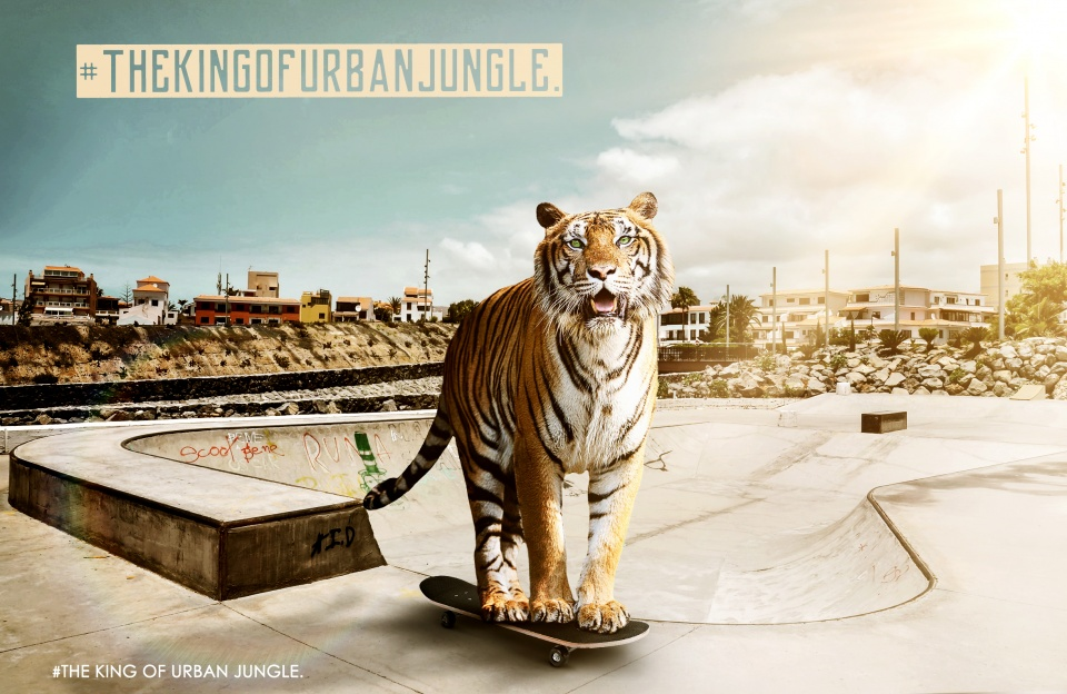#king of urban jungle