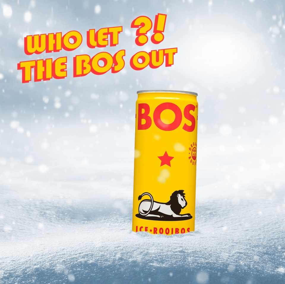 Bos / Dogs out