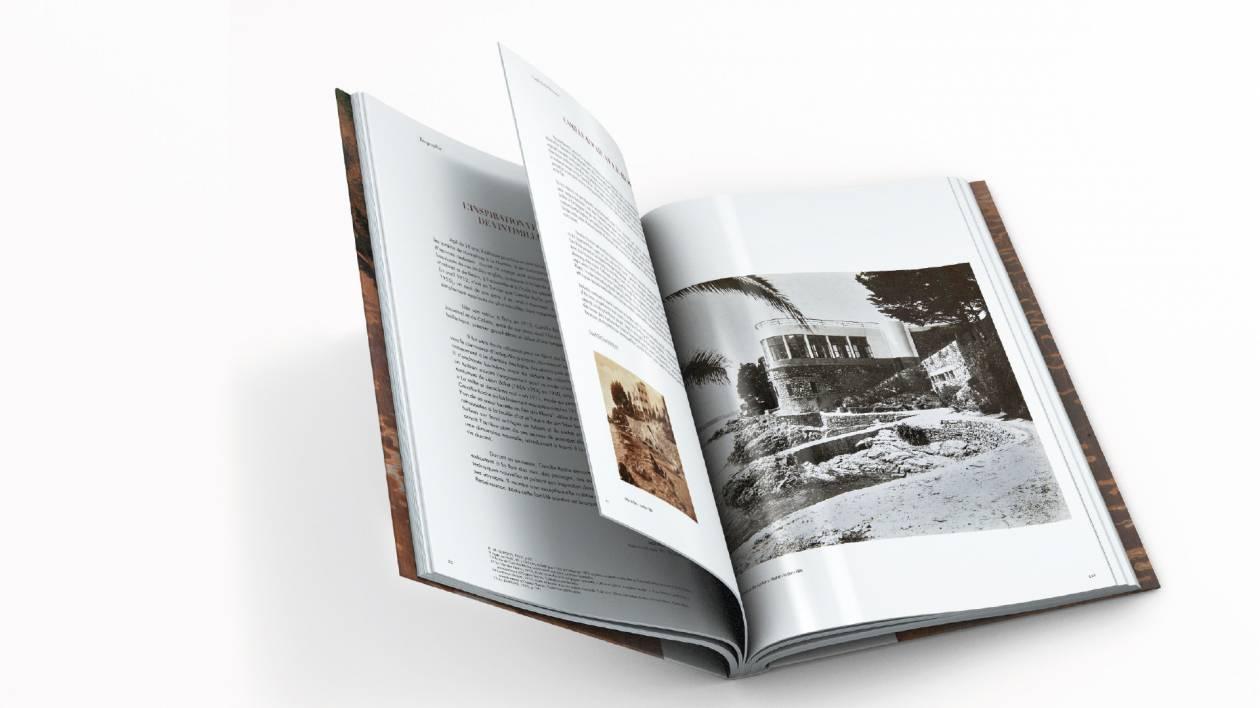 book-Dumonteil