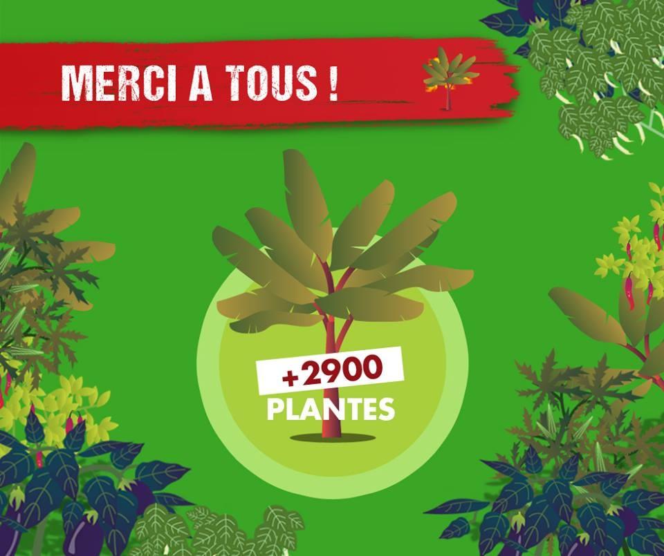 Opération 1 tablette de chocolat achetée = 1 arbre planté à Batéguédia