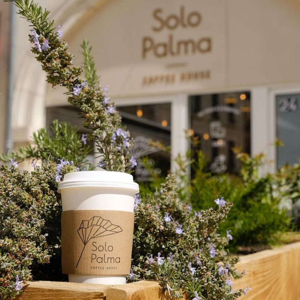 Solo Palma